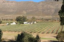 Olijvenhof Olive Estate, Montagu, South Africa