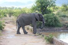 Safari With Us - Day Tours