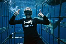 Shark Cage Diving, Durban, South Africa