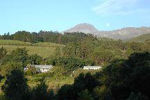Upland Organic Wine, Wellington, South Africa
