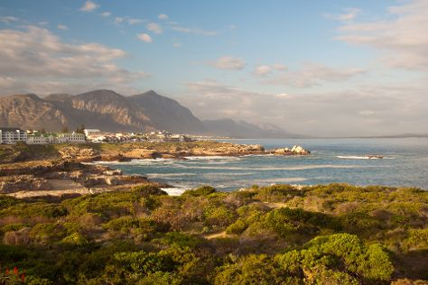 Hermanus Cliff Path, Hermanus, South Africa