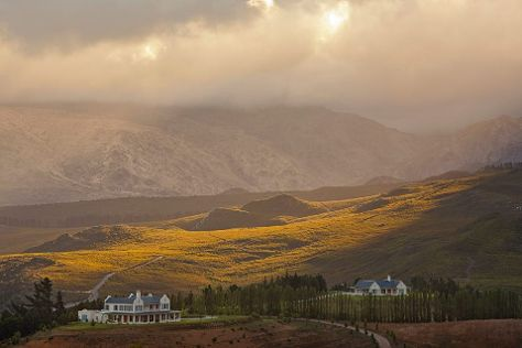 Oneiric Wines, Elgin, South Africa