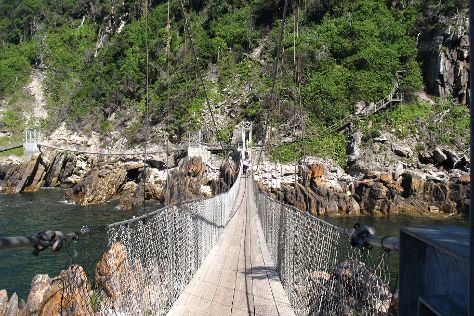 Storms River Suspension Bridge, Tsitsikamma National Park, South Africa