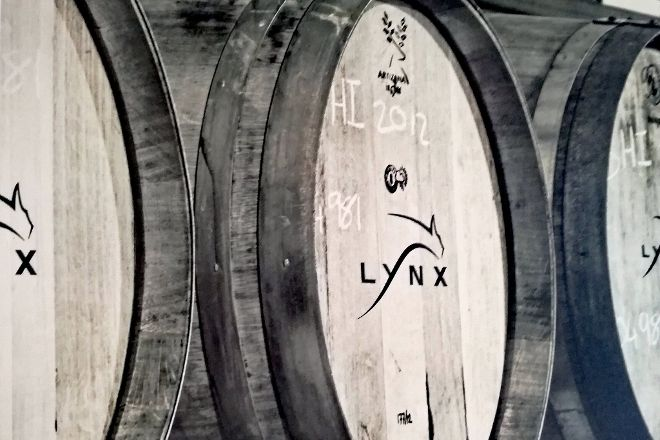 Lynx Wine, Franschhoek, South Africa