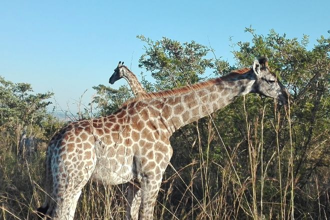 Mbombela Experience - Day Tours, Nelspruit, South Africa