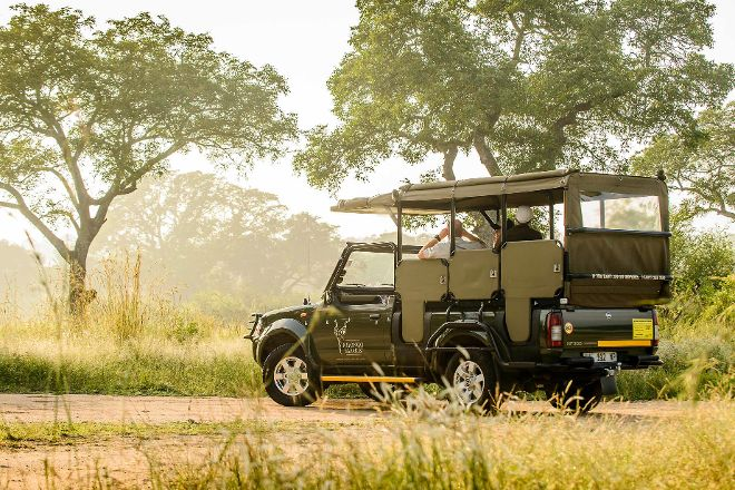 Nhongo Safaris, Kruger National Park, South Africa