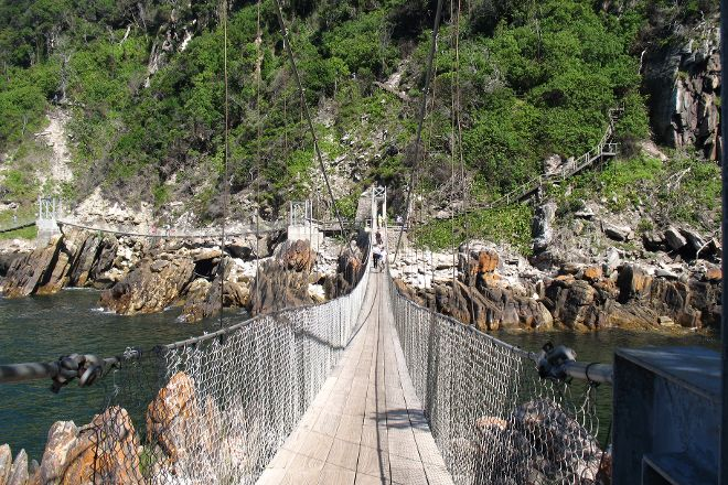 Suspension Bridge, Tsitsikamma National Park, South Africa