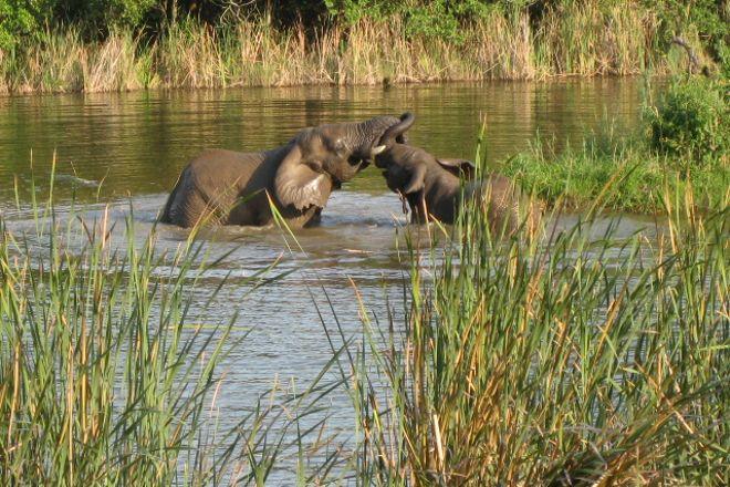 The Elephant Sanctuary, Hazyview, South Africa