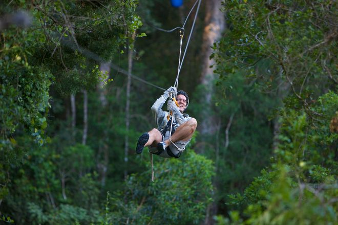 Tsitsikamma Canopy Tours, Storms River, South Africa