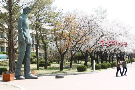 Yeungnam University Love Road, Gyeongsan, South Korea