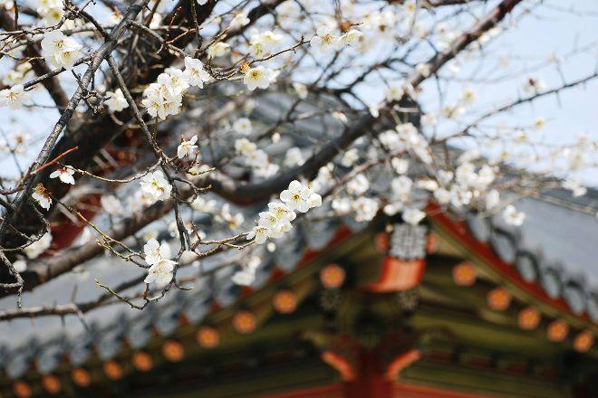 Hwaseong Haenggung Palace, Suwon, South Korea
