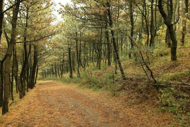 Jeju Olle Trail Routes, Jeju Island, South Korea