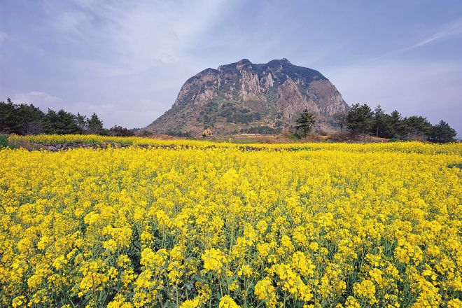 Sanbangsan Mountain, Seogwipo, South Korea