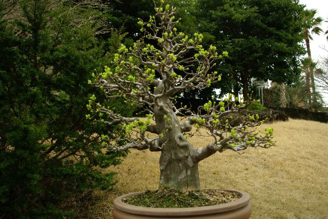 Spirited Garden, Jeju, South Korea