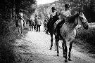 Caballos Albarracin