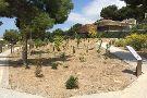 Detunda Botanical Garden