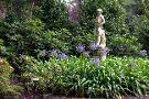 Jardin Botanico Atlantico