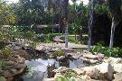 Palmetum Santa Cruz Jardin Botanico