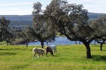 Arrocampo Resevoir, Caceres, Spain