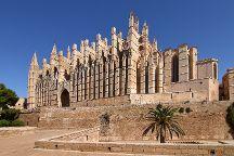 Catedral de Mallorca