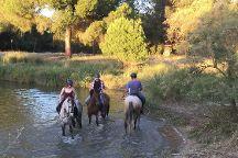 Doñana Horse Adventure, El Rocio, Spain