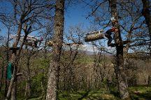 El Robledal del Oso - Parque de aventuras, Cervera de Pisuerga, Spain