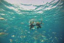 Get Wet Snorkeling