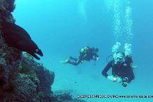 Giedre & Enrique Diving, Los Cristianos, Spanje