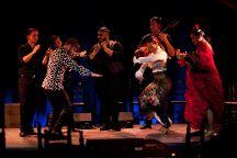 La Bodega Flamenca (Flamenco Barcelona), Barcelona, Spain