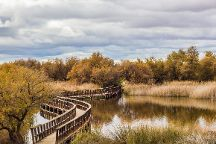 Parque Nacional de las Tablas de Daimiel, Daimiel, Spain