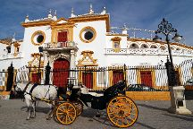 Real Maestranza de Caballeria de Sevilla, Seville, Spain