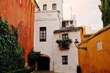 Sevilla4Real, Seville, Spain