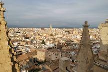 Terrazas de la Catedral de Palma, Palma de Mallorca, Spain