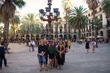 Volarte Tours, Barcelona, Spain