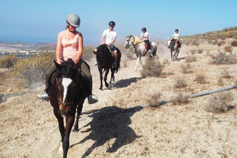 Horse Riding Adventures in Tenerife, San Miguel de Abona, Spain