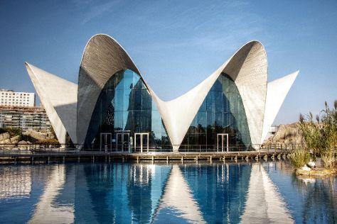 Oceanografic Valencia, Valencia, Spain