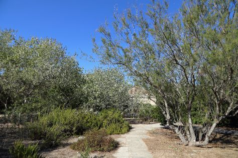 Parque Natural S'Albufera de Mallorca, Ca'n Picafort, Spain