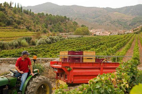 Sangenis i Vaque, Porrera, Spain