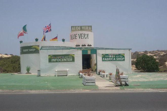 Aloe Vera Infocenter - Dunas, Corralejo, Spain