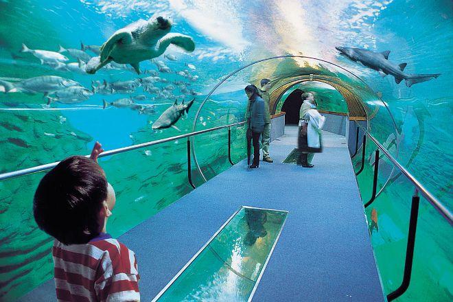 Aquarium, San Sebastian - Donostia, Spain
