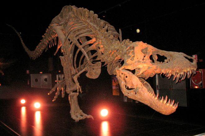 Dinopolis, Teruel, Spain