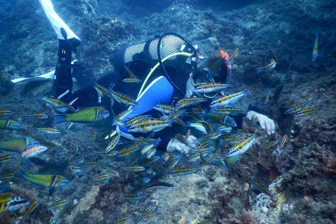 Into The Blue Diving, Benalmadena, Spain
