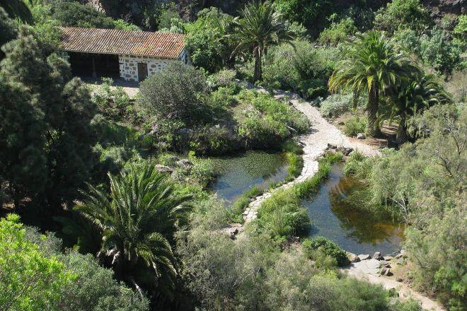 Jardin Botanico Viera & Clavijo, Las Palmas de Gran Canaria, Spain