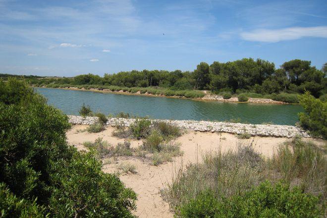 Parque Natural de la Albufera, Valencia, Spain