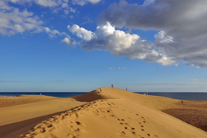 Reserva Natural Especial de Las Dunas de Maspalomas, Playa del Ingles, Spain