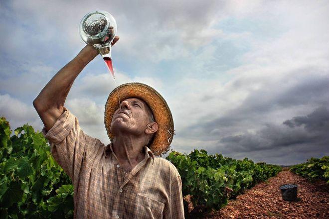 Rioja Wine Trips, Logrono, Spain