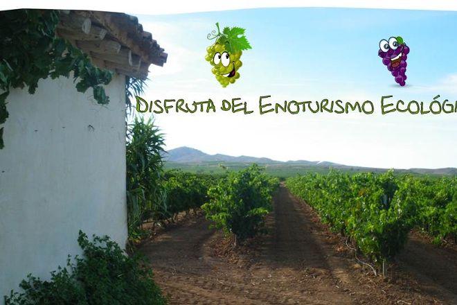 Uvas y Vino, Aldeanueva de Ebro, Spain