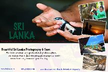 Beautiful Sri Lanka Photography And Tours