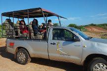 Best Yala Safaris - Day Tours