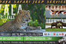 Daya Safari Jeep Service